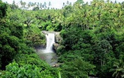 Tegenungan Waterfall,Bali Tour Packages,One Day Tour with Spa Treatment