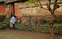 Tenganan Village,Bali Sightseeing,Goa Lawah and Karangasem Tour