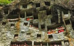 The Lokomata image, TORAJA CULTURE AND NATURE TOUR  3 Days / 2 Nights, Toraja Adventure