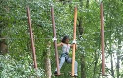 Treetop Adventure,Fun Adventures,Bali Treetop Park