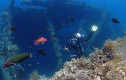Diving Activities by BMR, Bali Diving, Tulambe Dive Site