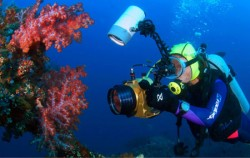 Underwater photography,Bali Diving,Bali Diving By Ena