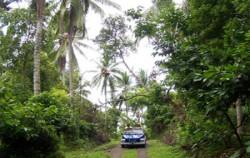 Village Tour,VW Bali Tour,VW Bali Tour
