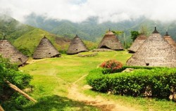 Wae Rebo Village,Komodo Adventure,Wae Rebo and Komodo Tours 5 Days 4 Nights
