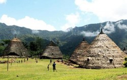 Wae Rebo Village,Komodo Adventure,Wae Rebo Village Tour 4 Days 3 Nights
