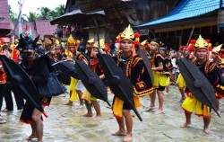 War Dance image, Nias Island Tour 4 Days 3 Nights, Sumatra Adventure