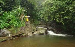 Jungle Trip In Bali,Bali Trekking,Jungle Trip